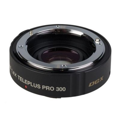 Kenko Pro 300 DGX 1.4x Teleconverter x Canon