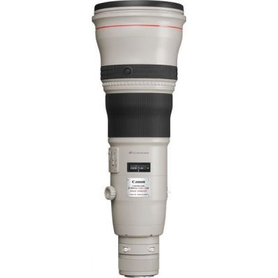 Obiettivo Canon EF 800mm f/5.6 L IS USM Lens