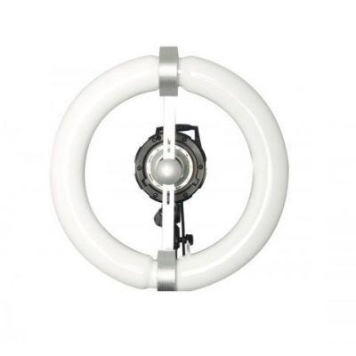 Quantuum Fomex N-Light 100W solo lampada